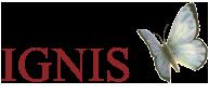Stiftelsen IGNIS